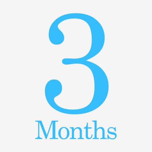 3 month forecast
