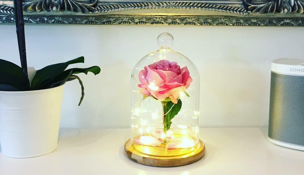 Large Enchanted Rose