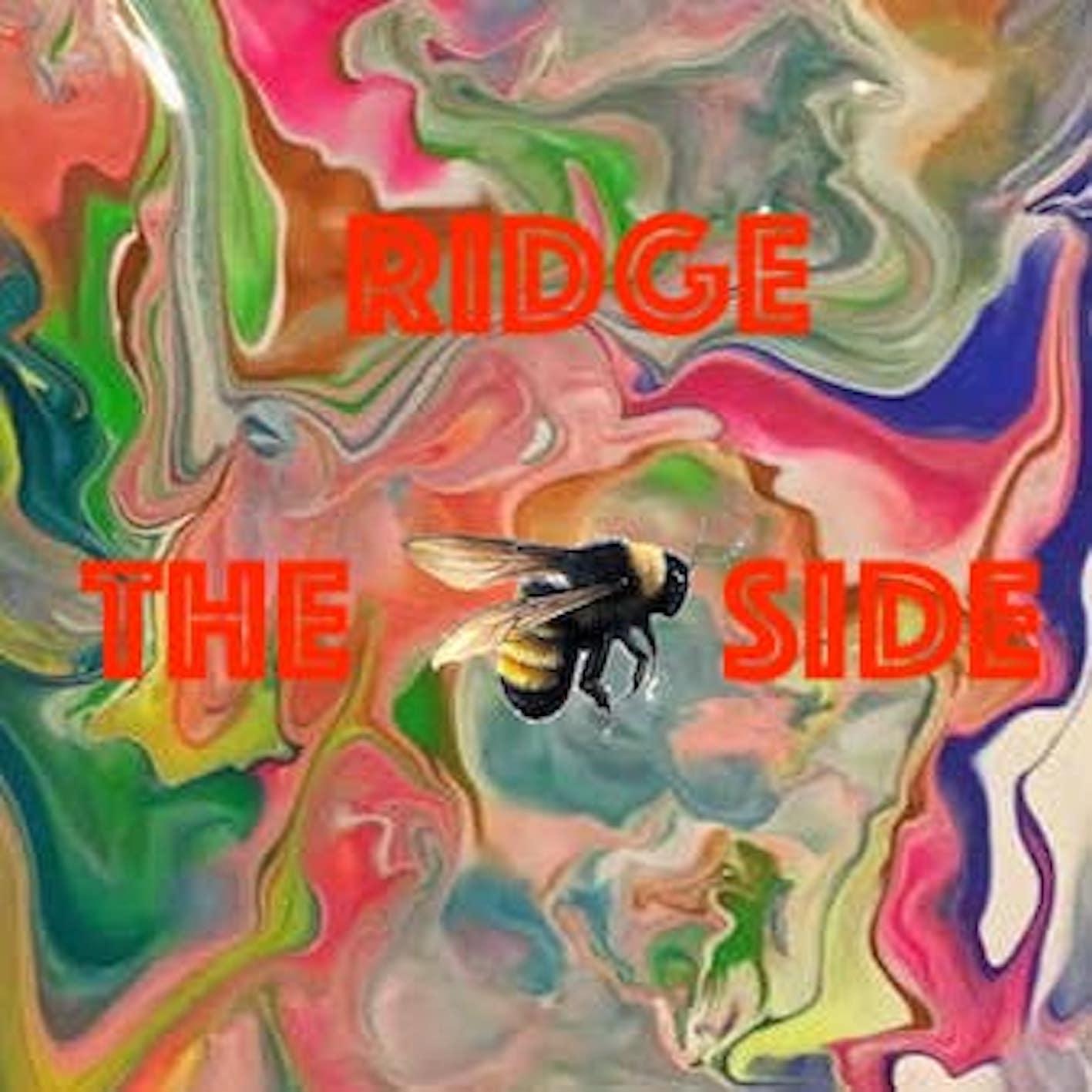 RIDGE - THE BEE SIDE
