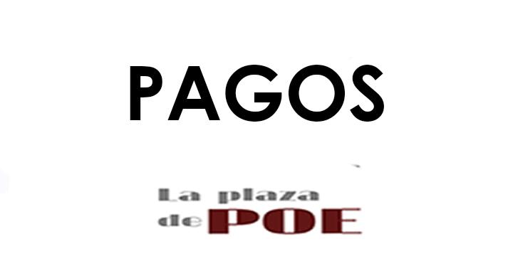 PAGOS DIFERENTES CUOTAS