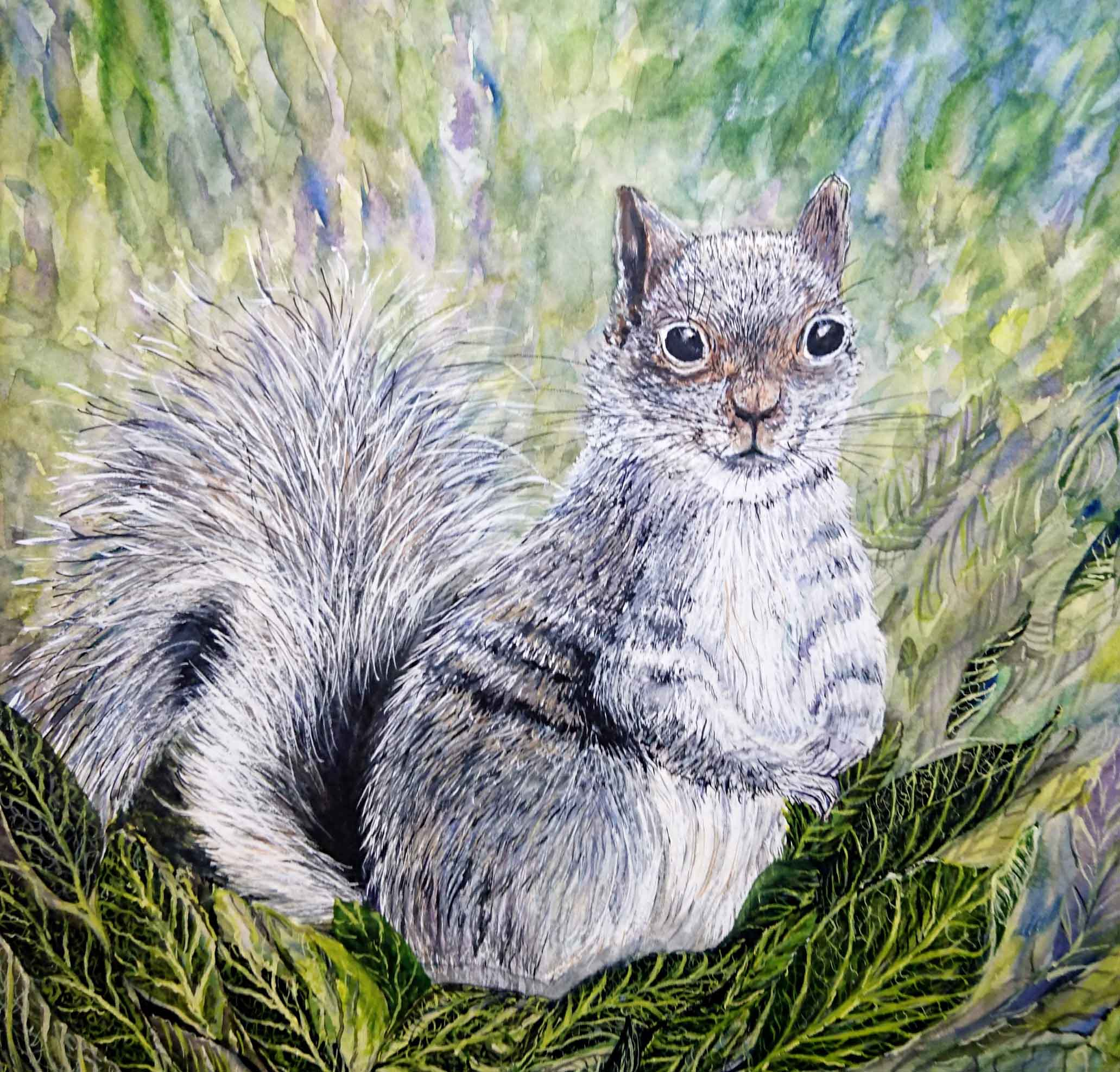SQUIRREL 1 grey