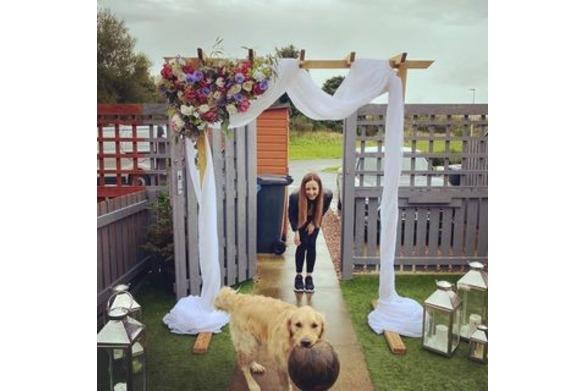 Garden Arch with Cute Doggo Friend