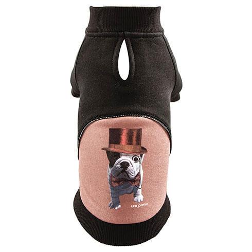 sweat Téo Dandy spécial bulldog