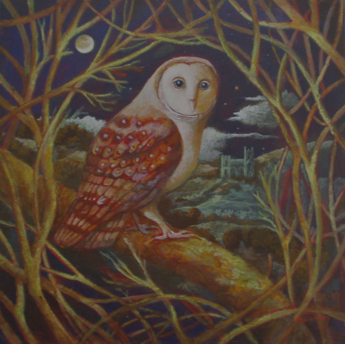 Owl in a Tree - Greeting Card