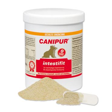 canipur - intestifit