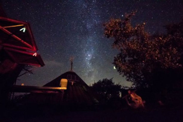Stars, Balule, Conservation, South Africa