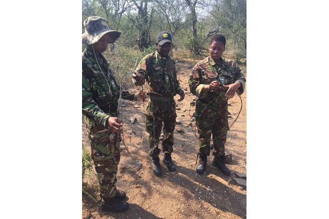 Black Mamba APU, Conservation, Balule, SA