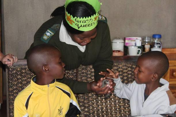 Lewyn, Bush Babies, Bush Baby, Afreco, Balule, SA