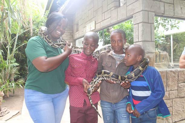 Hoedspruit, Lewyn, snake, Bush Babies, Balule