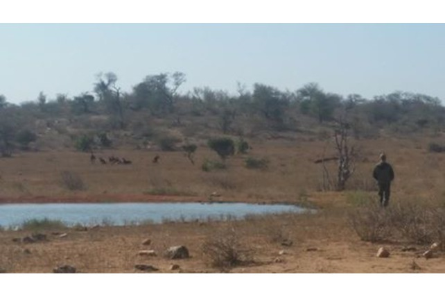 Water hole on Balule in Greater Kruger Park