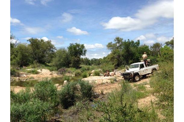 wildlife tracking, antenna, anti-poaching, africa