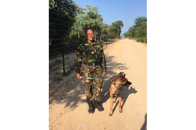 K9 Patrol, Black Mamba APU, Balule, South Africa