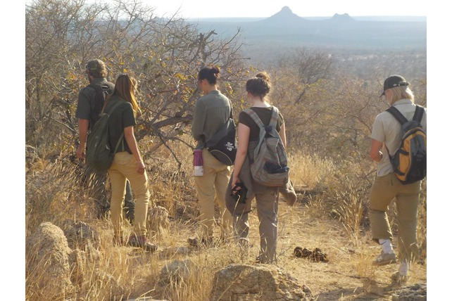 Conservation volunteers in the field. Africa