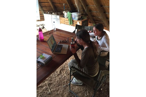 Research project, Dr Wright Balule Game Reserve