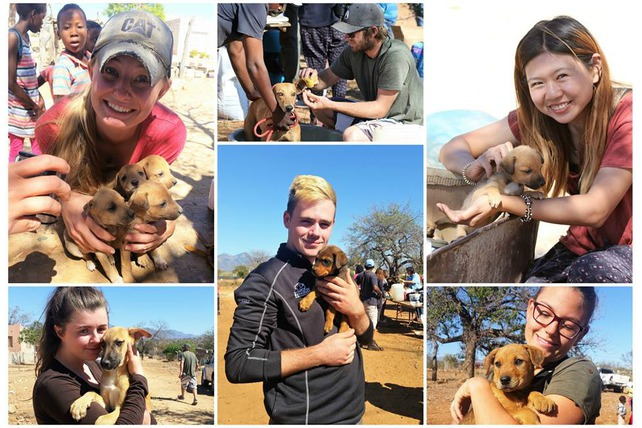 Hoedspruit animal outreach (HALO)