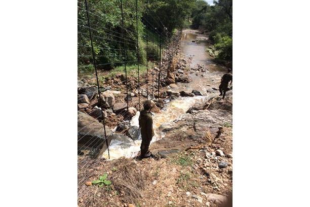 floods, balule, conservation, rhino, elephant