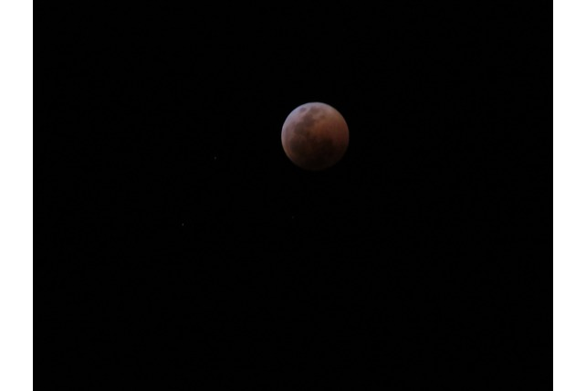 Blood moon, eclipse, stunning, SA, night sky, TA