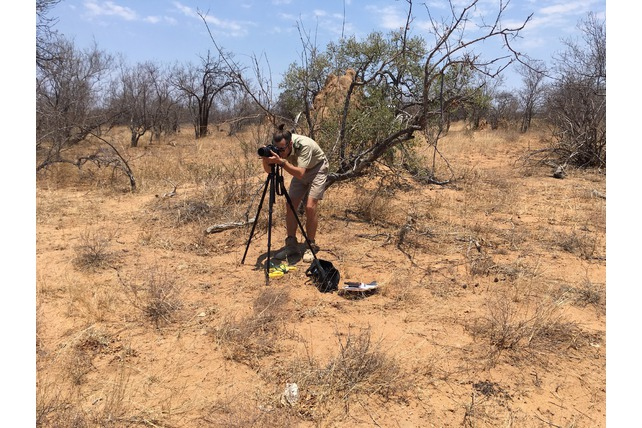 Tripod, research, bush, conservation, volunteering