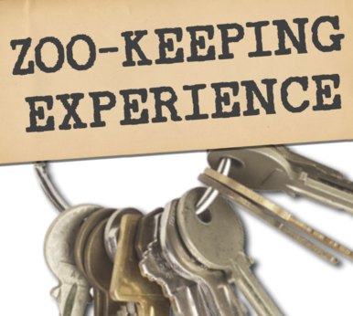 Zoo keeper Experience