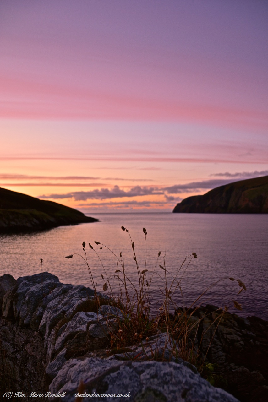 Long Grass at Sunset, Burafirth, Unst