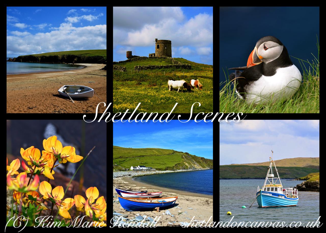 Ravensburger Jigsaw - 1000 piece - Shetland Scenes 5