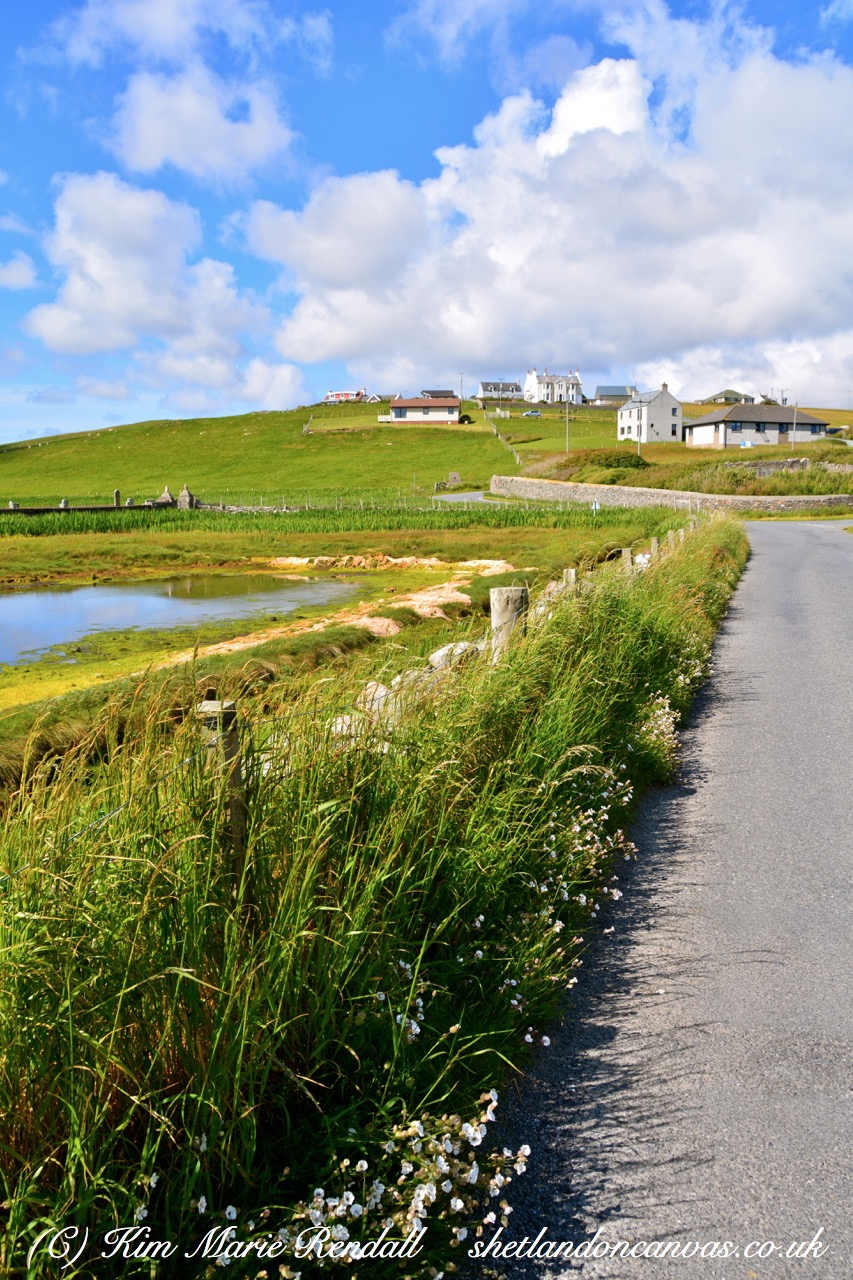 Summer's Day at Hillswick (2)
