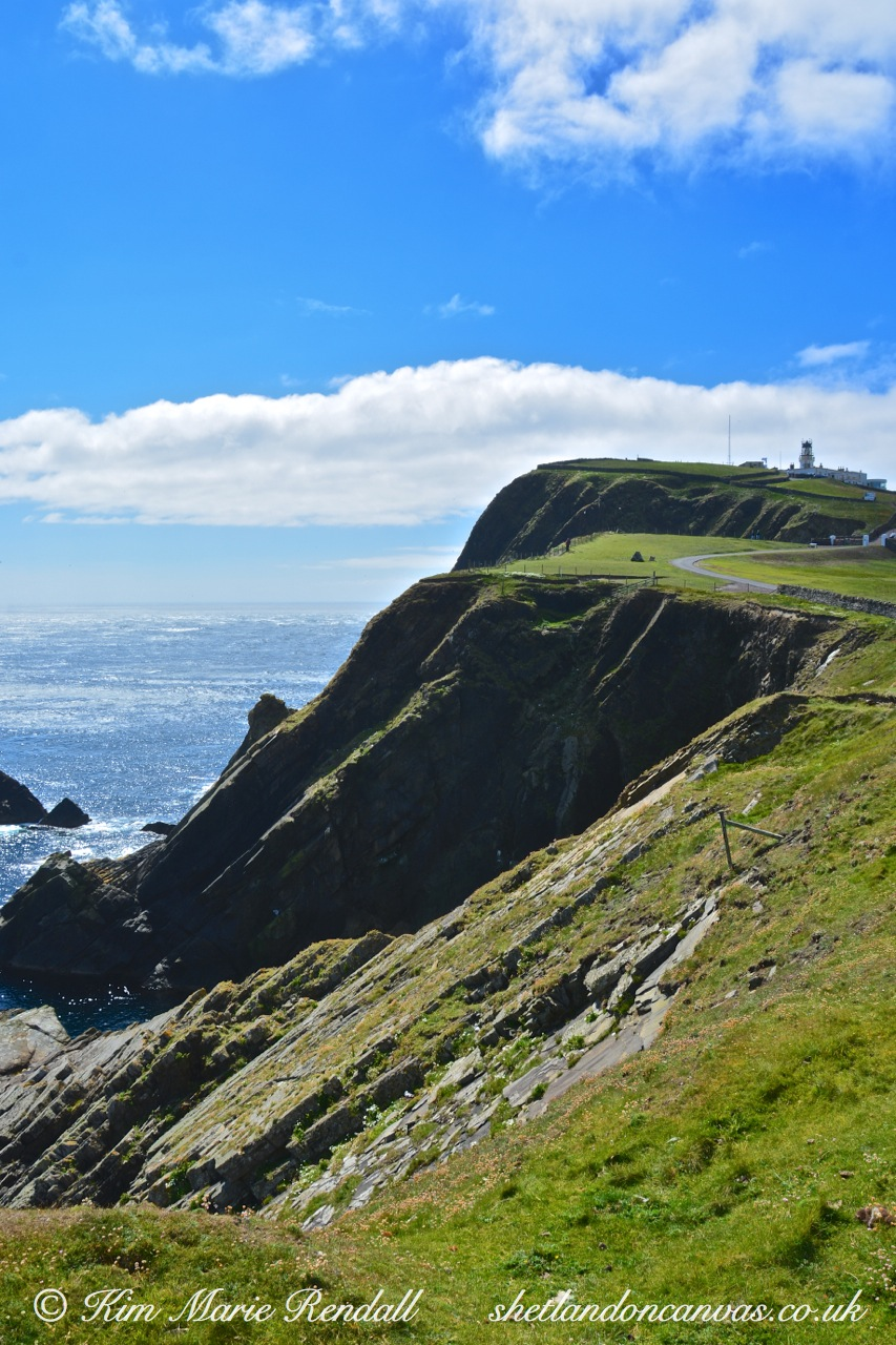 Summer's Day at Sumburgh Head