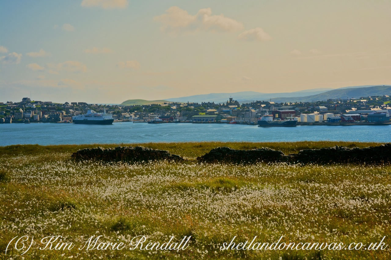 A View of Lerwick from Bressay