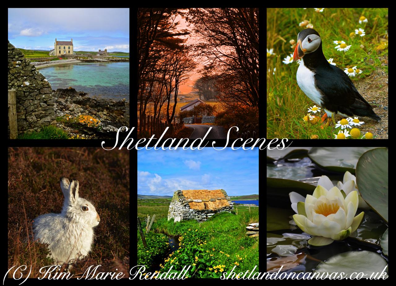 Ravensburger Jigsaw - 1000 piece - Shetland Scenes 3
