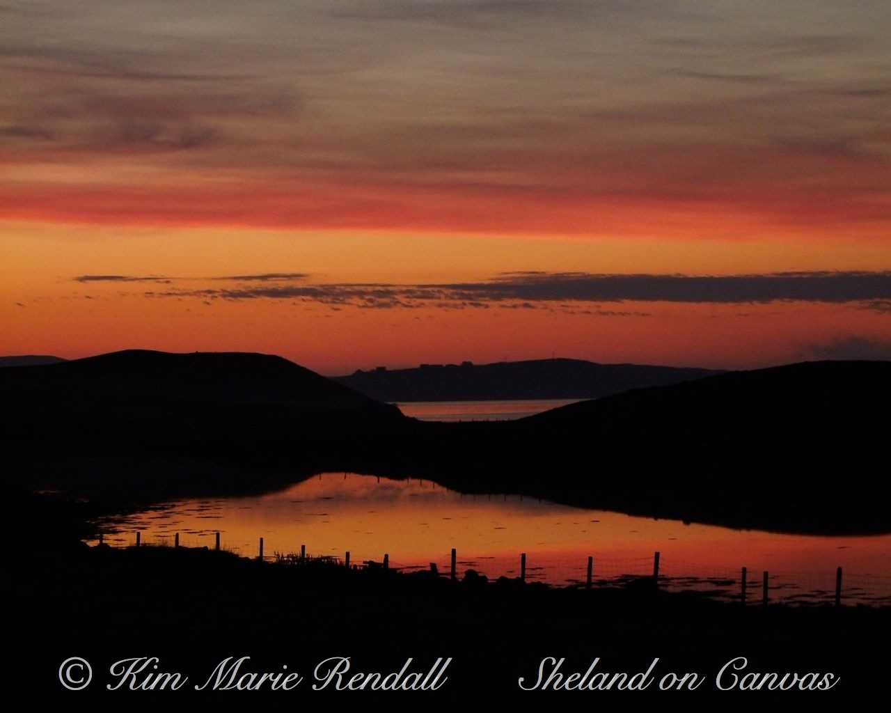 Vibrant Summer Sunset, North Nesting