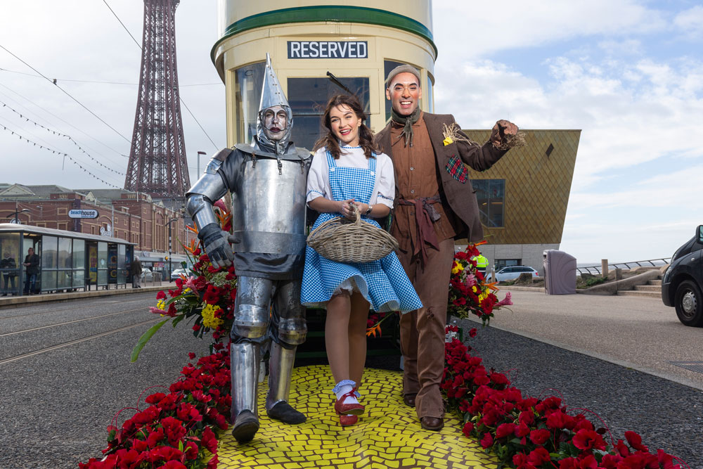 The Wizard of Oz costume hire - Tin Man