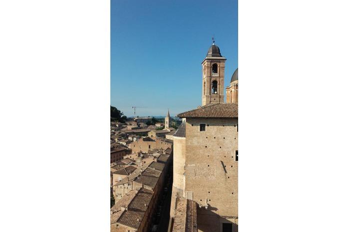 Torricini Palazzo Ducale Urbino