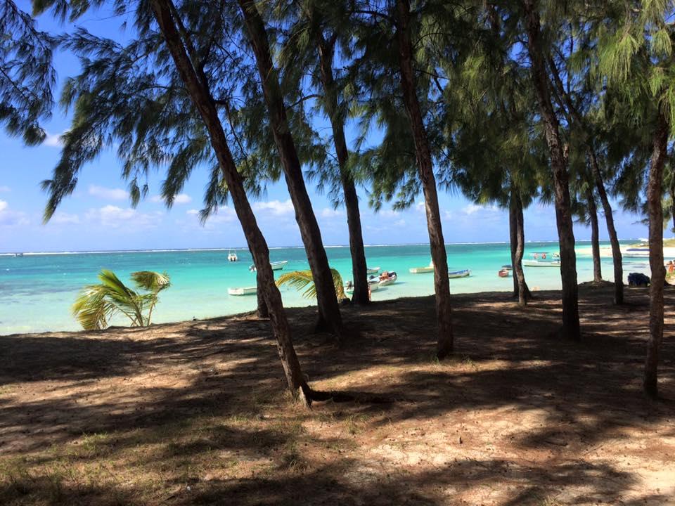 Reisebüro Mehler in Bottrop | Mauritius Experte