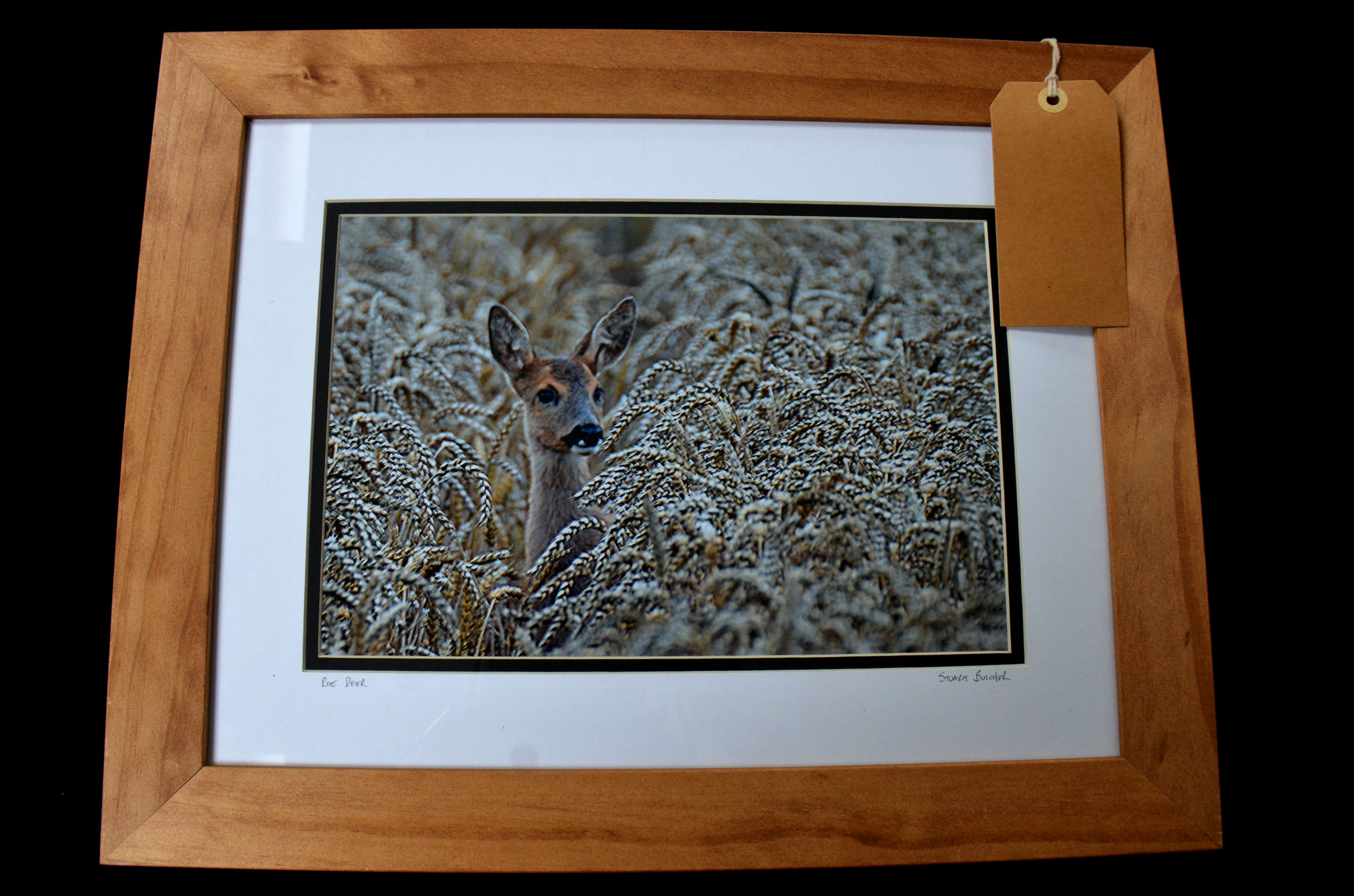 "Mounted Print 12 x 8"" Framed"