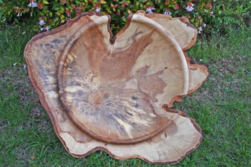 "23"" Natural edged Hornbeam Bowl, NOW SOLD"