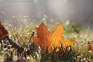 Herbstwetter