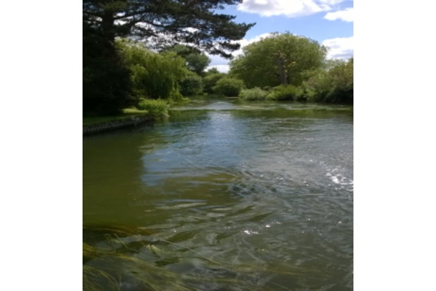 Wisdom House River