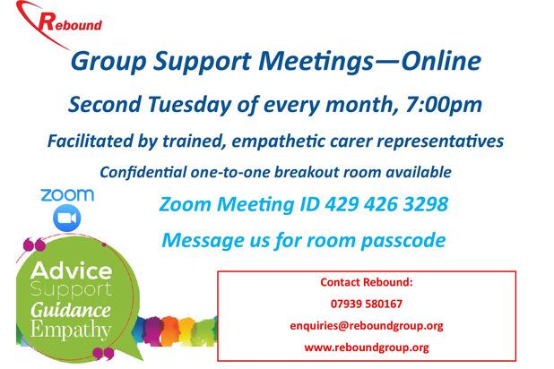 Zoom meetings online