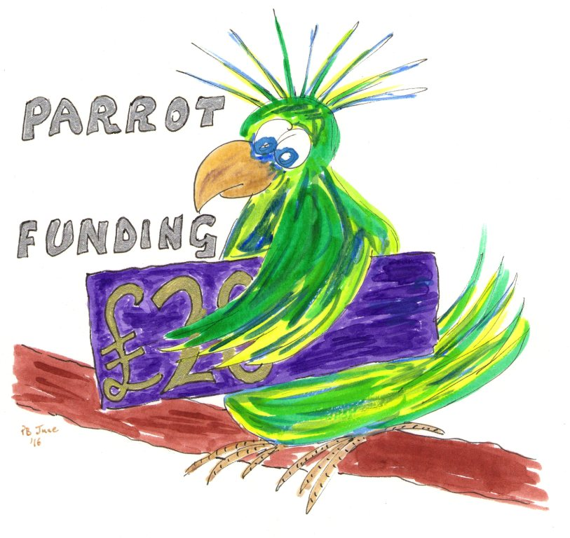 Is Crowd Funding, Rook Funding or Parrot Funding