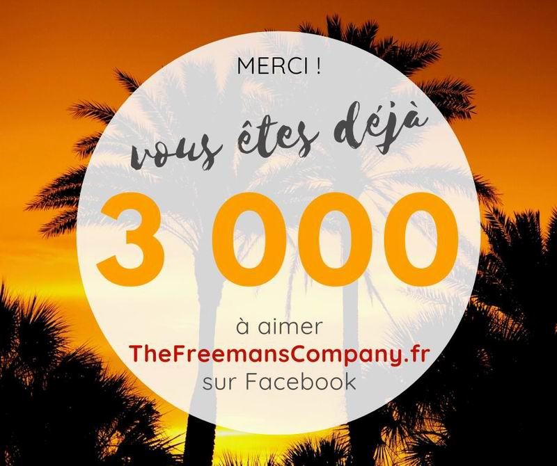 3000 fans sur facebook thefreemanscompany.fr