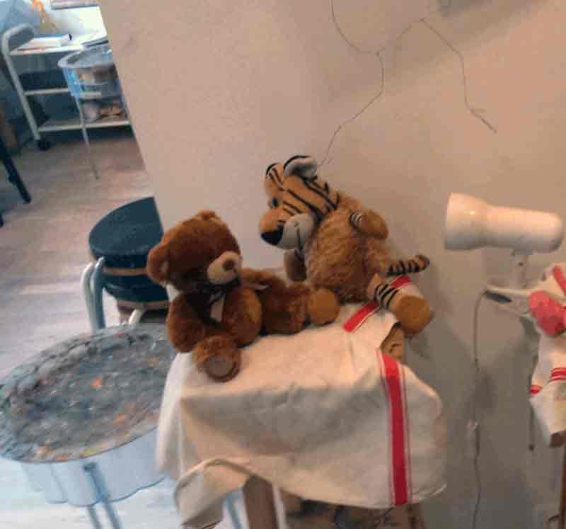 Tigrou et l'ourson