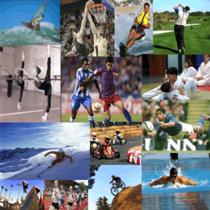 Técnico Superior en Actividades Físicas y Deportivas