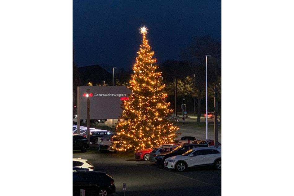 Großer Weihnachtsbaum bei Audi