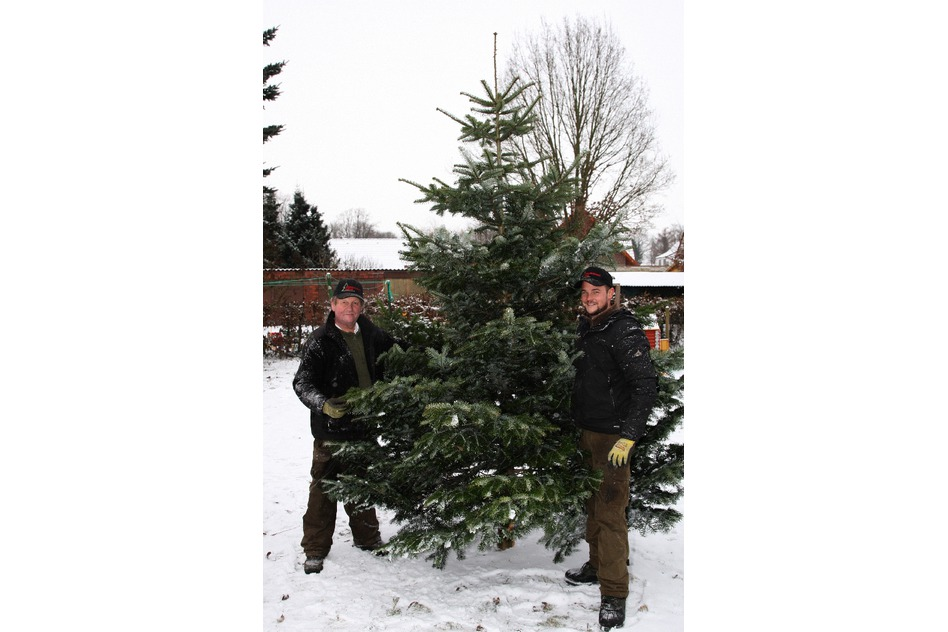 Weihnachtsbäume Holstein: ein starkes Team