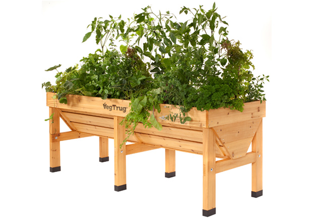 Veg Trug MEDIUM