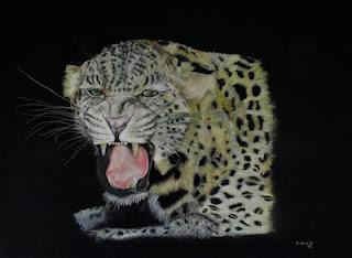 La noche del leopardo