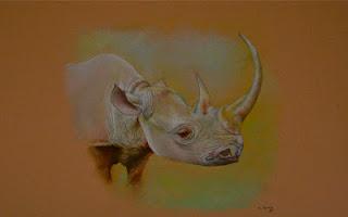 Rinoceronte negro