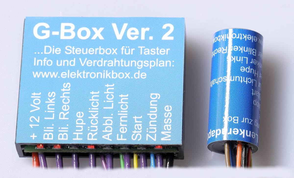 Elektronikbox Ausführung GIB/G