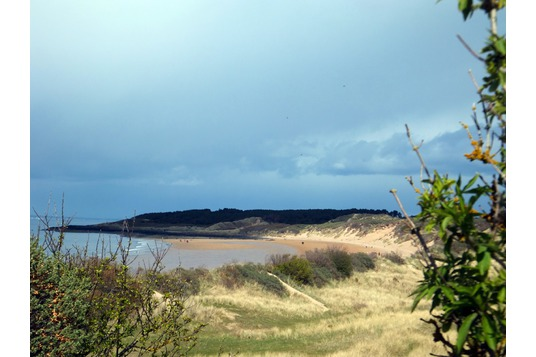 Gullane Bents
