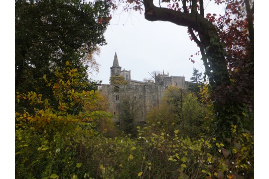 Dunfermline Palace from Pittencrieff Glen
